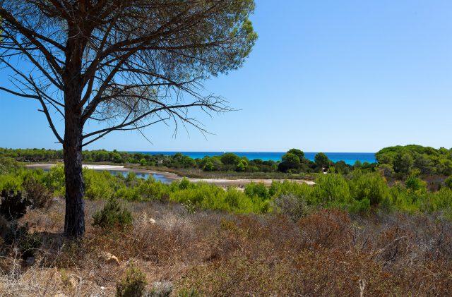 Der geschützte Bereich des internationalen Natura 2000-Netzwerks in Biderosa