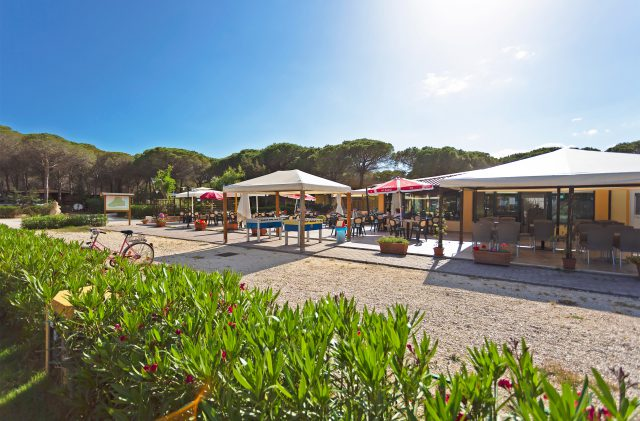The outdoor bar area at Camping Cala Ginepro, beside the pine forest